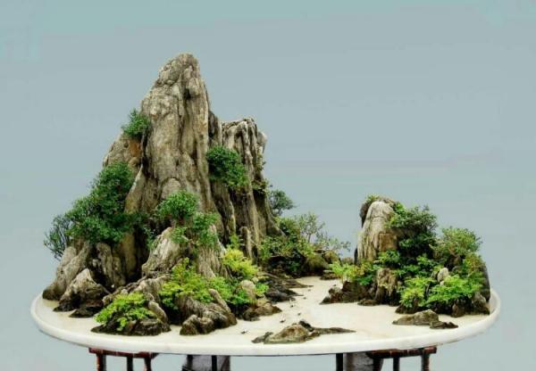 中国盆景艺术大师芮新华谈山水盆景发展现状及发展方向