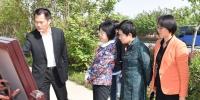 袁华厅长到淮南寿县调研文物保护工作 - 文化厅