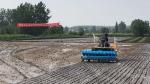义安区农机局组织召开水稻精量机直播和无人机植保现场会 - 农业机械化信息