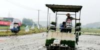 广德县举行水稻机插同步精准施药现场会 - 农业机械化信息