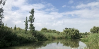 """与巢湖同为国家重点治理湖的滇池已成功摘掉""""劣""""字头 - 中安在线"""