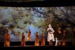 第八届中国(安庆)黄梅戏艺术节开幕 - 文化厅