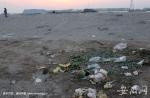 沙滩上同样垃圾遍地 - 安徽网络电视台